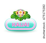 rounded and glossy hawaiian... | Shutterstock .eps vector #675175282