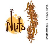 nuts isolated on white... | Shutterstock .eps vector #675217846