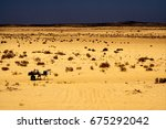 Two People In The Desert Of...