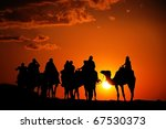 Camels With Riders In Sunset
