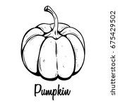 hand drawn fresh pumpkin.... | Shutterstock .eps vector #675429502