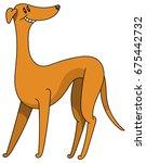 cute dog breed greyhound... | Shutterstock .eps vector #675442732
