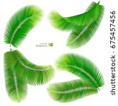 tropical palm leaf. vector eps... | Shutterstock .eps vector #675457456