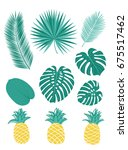 set of tropical leaves and... | Shutterstock .eps vector #675517462