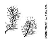 Hand Drawn Pine Branch. Vector...