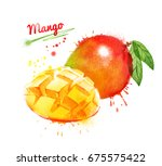 watercolor illustration of... | Shutterstock . vector #675575422