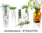 homeopathy. medicinal herbs in...   Shutterstock . vector #675614752