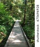 lynn headwaters regional park... | Shutterstock . vector #675696928