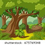 forest scene with many trees... | Shutterstock .eps vector #675769348