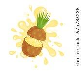 sliced ripe pineapple juice... | Shutterstock .eps vector #675786238