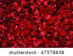 Stock photo background of red rose petals 67578838