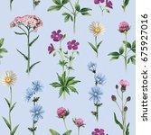 watercolor illustrations of...   Shutterstock . vector #675927016
