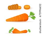 vector illustration of carrot . ... | Shutterstock .eps vector #675996652