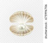vector realistic beautiful 3d... | Shutterstock .eps vector #675996706