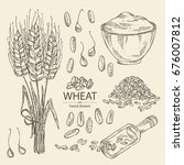 collection of wheat  plate with ... | Shutterstock .eps vector #676007812