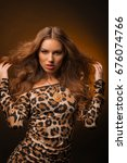 girl in leopard dress and black ... | Shutterstock . vector #676074766