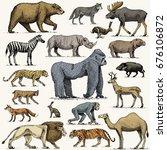 gorilla  moose or eurasian elk  ... | Shutterstock .eps vector #676106872