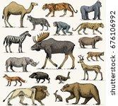 gorilla  moose or eurasian elk  ... | Shutterstock .eps vector #676106992