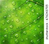 vector water drops on green... | Shutterstock .eps vector #676243705