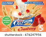 oat flakes with cranberry... | Shutterstock .eps vector #676247956