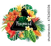 banner from tropical plants | Shutterstock .eps vector #676260106