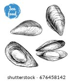 hand drawn sketch style mussels ... | Shutterstock .eps vector #676458142
