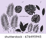 tropical plant leaves vector... | Shutterstock .eps vector #676495945