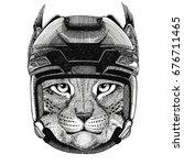 wild cat lynx bobcat trot... | Shutterstock . vector #676711465