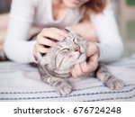 Stock photo happy cat lovely comfortable sleeping by the woman stroking hand grip at love to animals concept 676724248