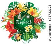 banner from tropical plants | Shutterstock .eps vector #676733125