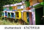multicolored colorful hive bee  ... | Shutterstock . vector #676759318