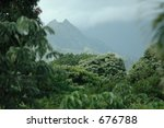 jungle volcano | Shutterstock . vector #676788