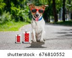Small photo of lost and homeless jack russell dog abandoned at the street waiting to be adopted, luggage and bags