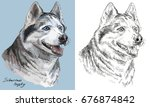 colored siberian husky portrait ... | Shutterstock .eps vector #676874842
