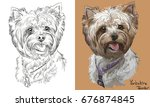 colored yorkshire terrier... | Shutterstock .eps vector #676874845