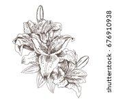 Hand Drawn Sketch Flowers Tiger ...