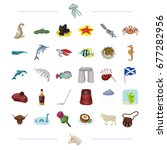 species  sea  animal and other... | Shutterstock . vector #677282956