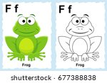 alphabet coloring book page... | Shutterstock .eps vector #677388838