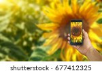 take photo by smartphone on... | Shutterstock . vector #677412325