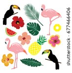vector illustration of tropical ... | Shutterstock .eps vector #677466406