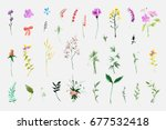 a large set of plant elements   ... | Shutterstock . vector #677532418