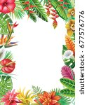 frame from tropical plants and... | Shutterstock . vector #677576776