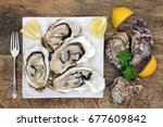 oyster shellfish on ice on a... | Shutterstock . vector #677609842