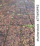 Small photo of Laterite block ground walk,laterite textured