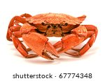 Red Boiled Crab Isolated On...