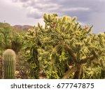 desert landscape | Shutterstock . vector #677747875