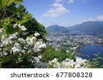 beautiful white flower in front ... | Shutterstock . vector #677808328