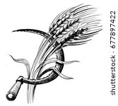 sickle and wheat | Shutterstock . vector #677897422