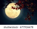 beautiful autumn fantasy  ... | Shutterstock . vector #677926678