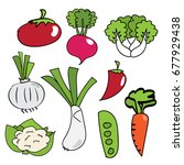 set of vegetable hand drawn. | Shutterstock .eps vector #677929438